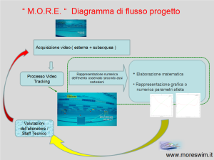 V1 - processo more
