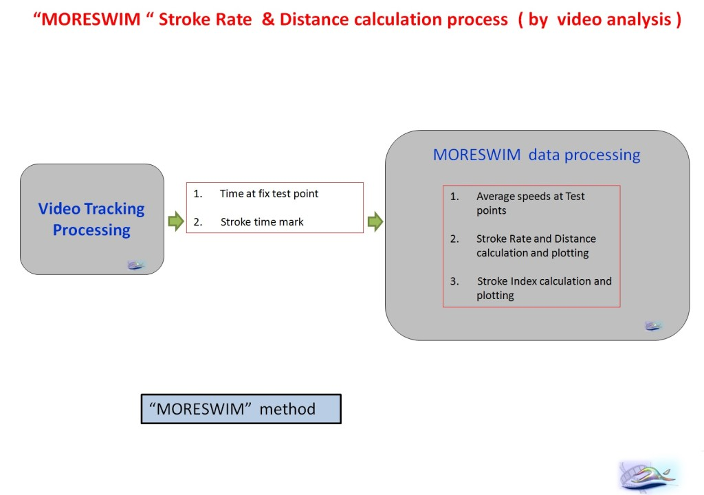 slide inglese moreswim method